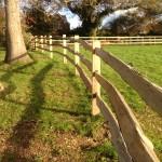 3 rail cleft on oak