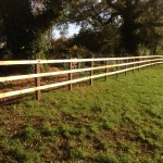 3 rail post and rail on creosote