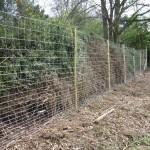Deer-fencing1