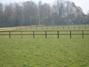 post-and-rail-paddocks1
