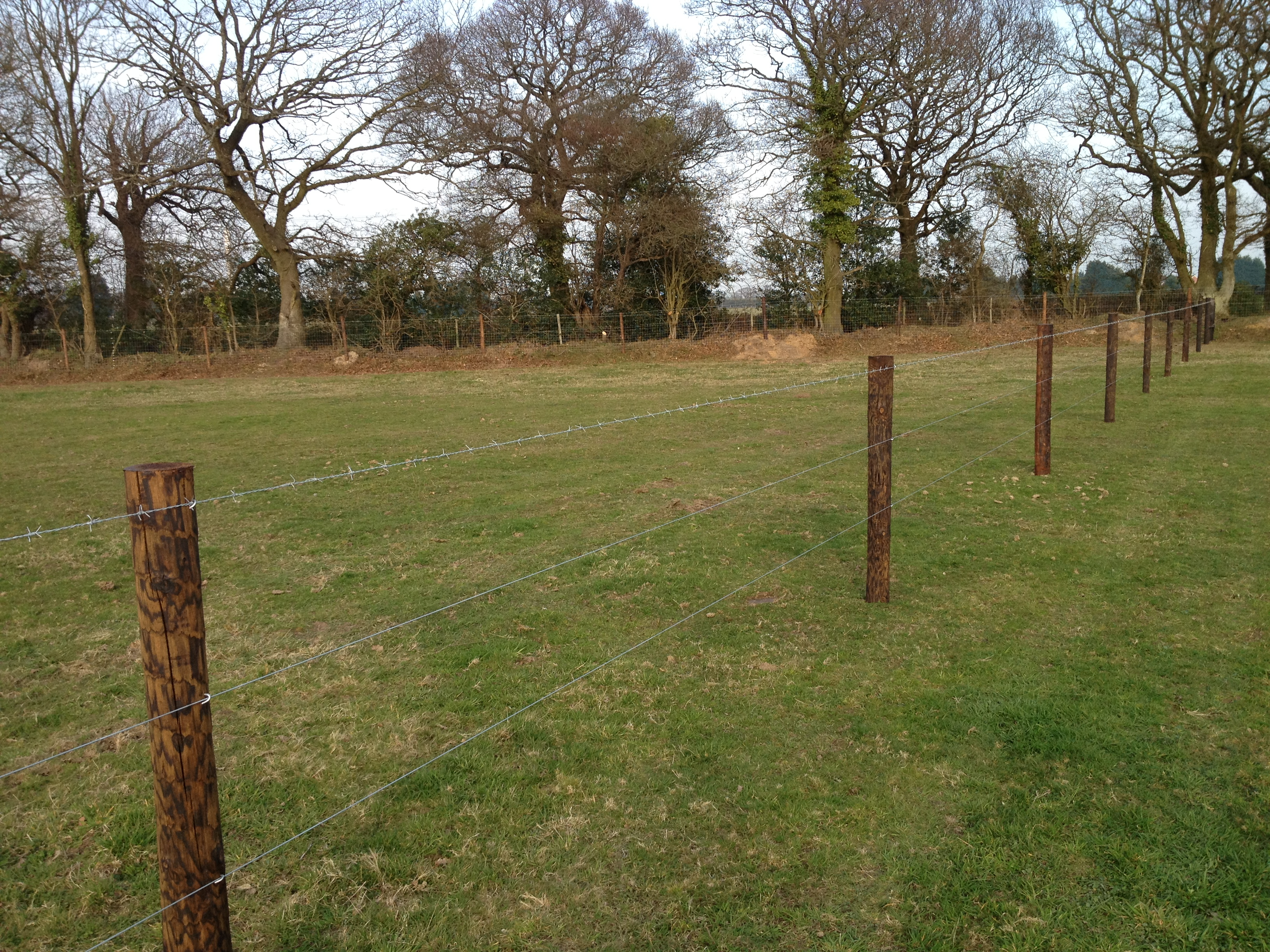 wire-fencing-on-creosoted-posts