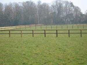 post-and-rail-paddocks